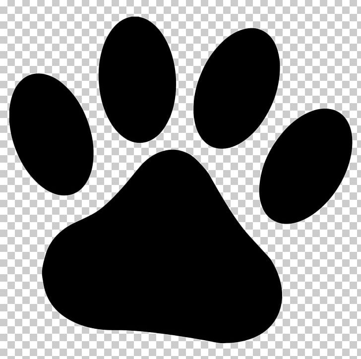 Dog Cougar Paw Bear PNG, Clipart, Animals, Bear, Black, Black And.