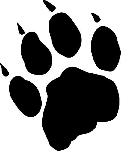 Cougar paw clipart 3 » Clipart Portal.