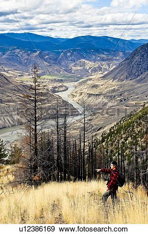 Stock Photograph of Man views, Fraser River canyon from Cougar.