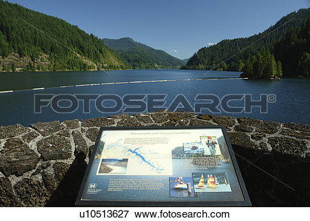 Picture of Willamette National Forest, OR, Oregon, Cascade Range.