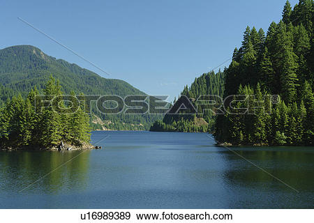 Stock Photograph of Willamette National Forest, OR, Oregon.