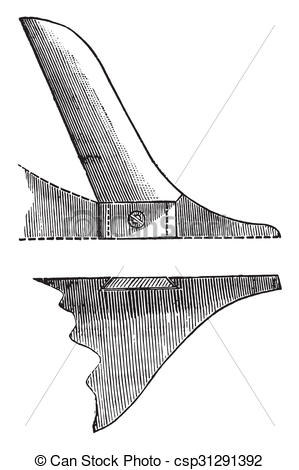Stock Illustration of Coulter member has convex edge, seen in.
