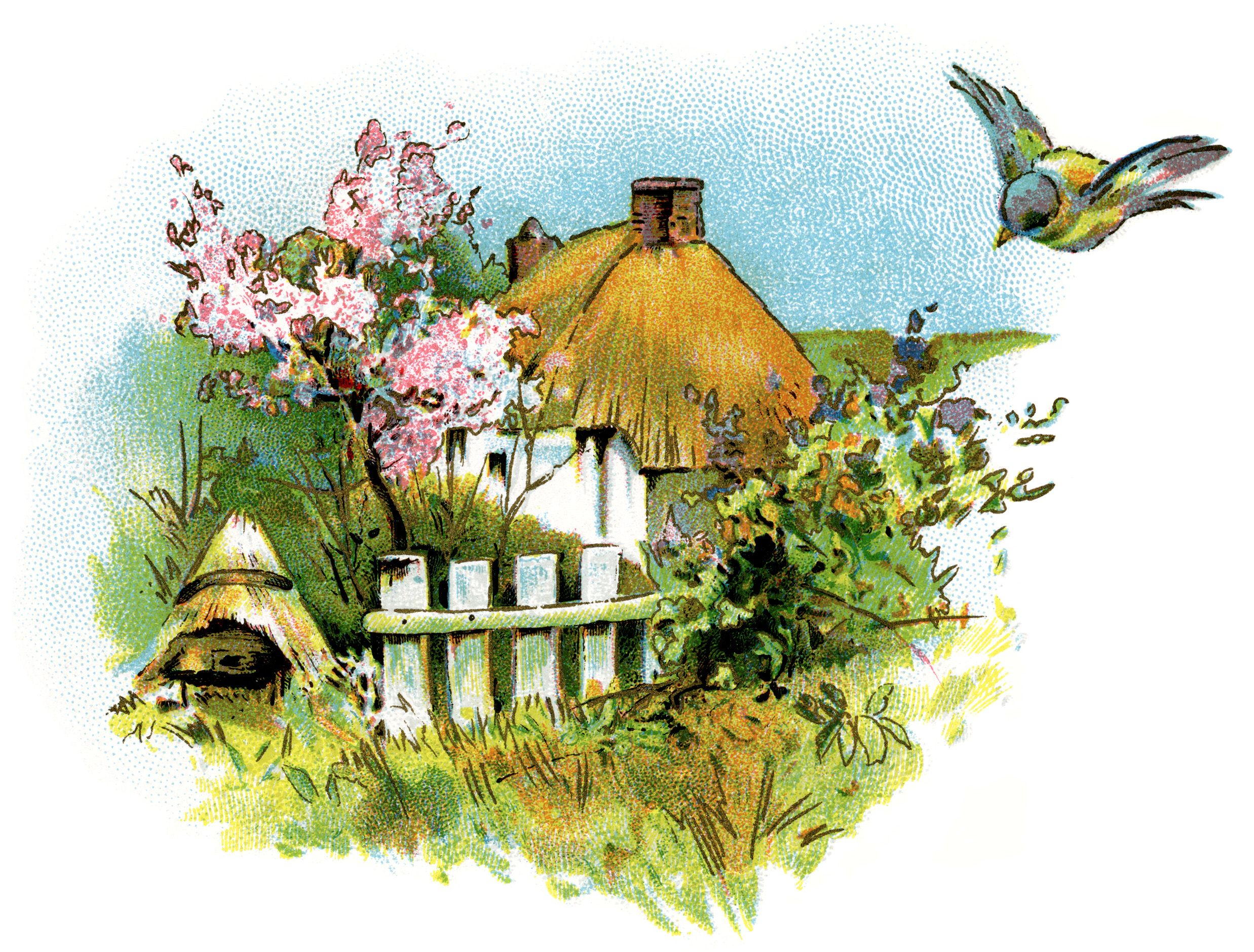 small country cottage clip art, thatched roof cottage illustration.