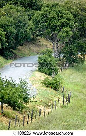Stock Image of Country Lane k1108225.