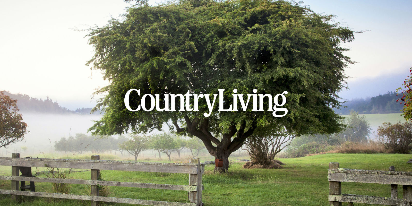 Country Decor, Craft Ideas, Comfort Food, and Antique Appraisals.
