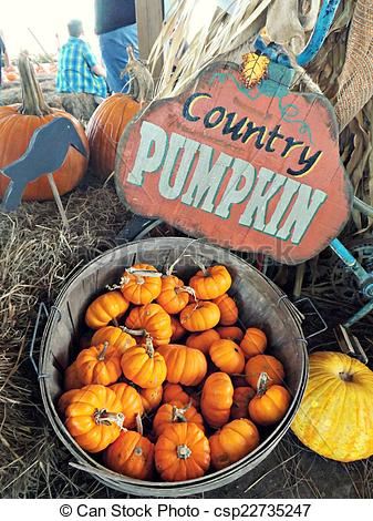 Stock Photo of Country Pumpkin sign at a Pumpkin Patch in.