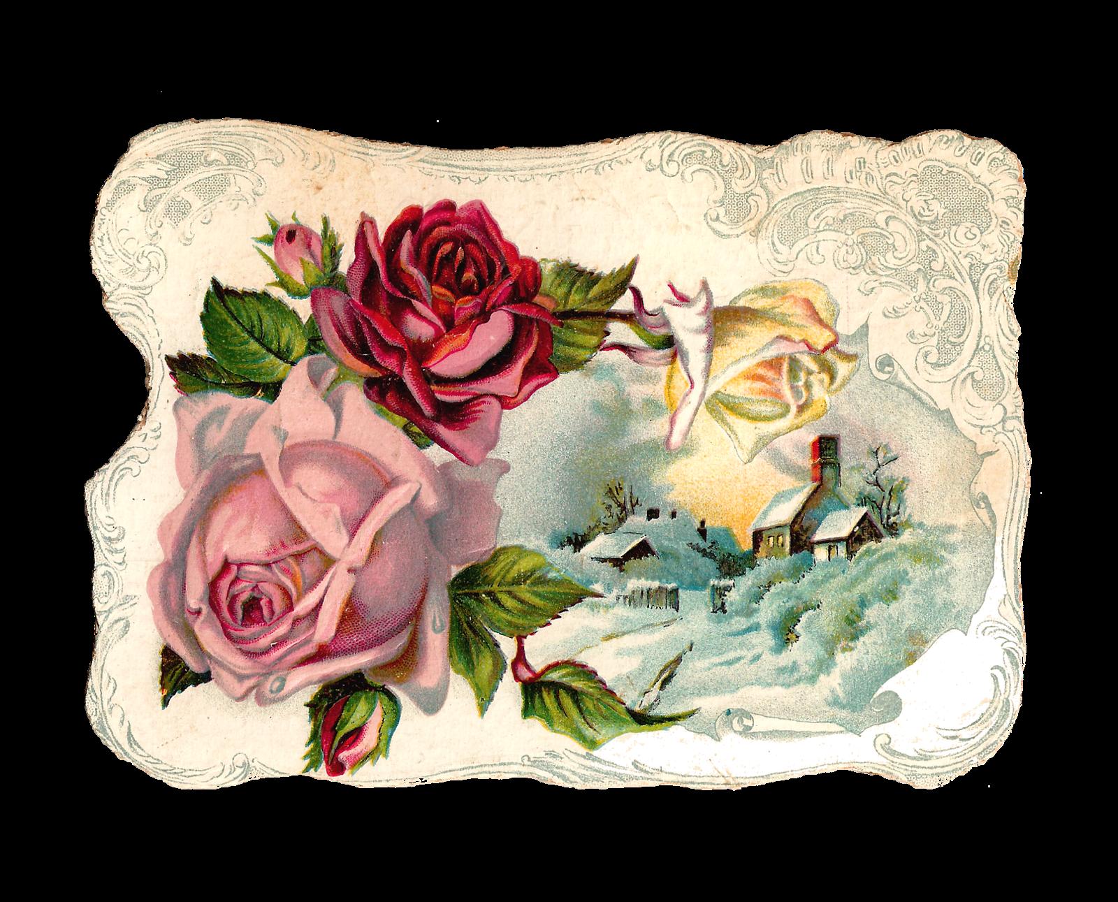 Antique Images: Free Digital Flower Pink Rose Corner Design.