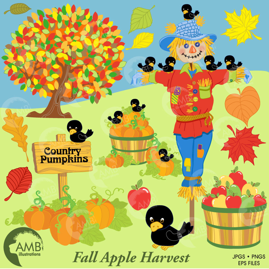 Harvest clipart, Thanksgiving clipart, Fall clip art, Autumn clipart,  Scarecrow AMB.