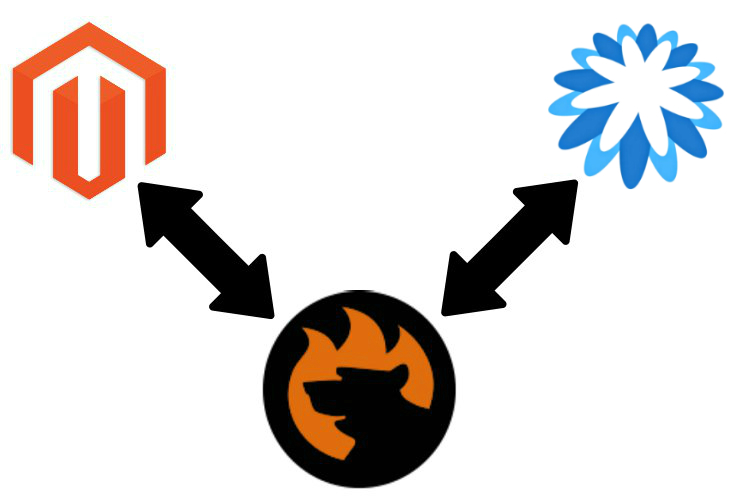 How to Connect Magento 2 to Coupa.