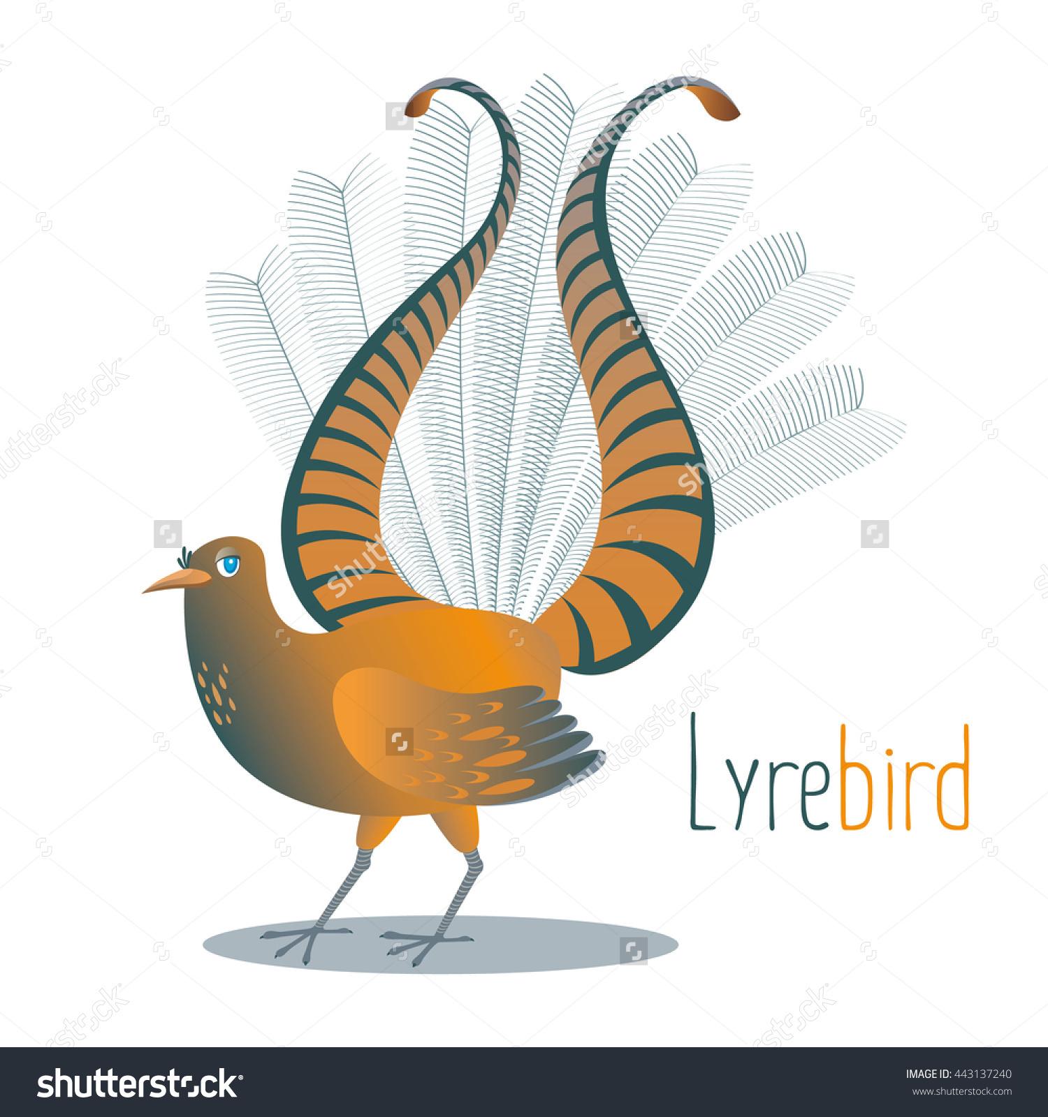 Australian National Bird Lyrebirdtail Shape Lyre Stock Vector.