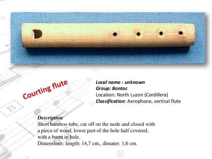 Philippine Ethnic Musical Instruments.