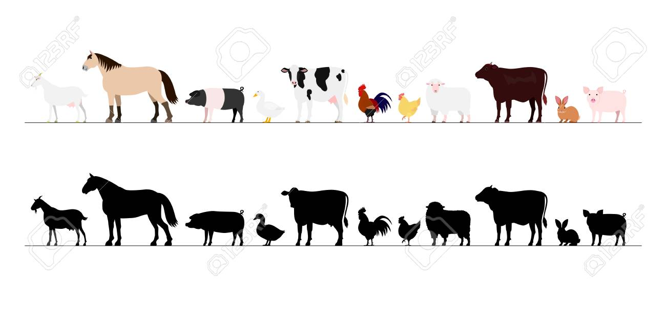 Farm animals border set.