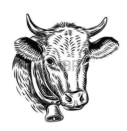 6,988 Bull Head Cliparts, Stock Vector And Royalty Free Bull Head.