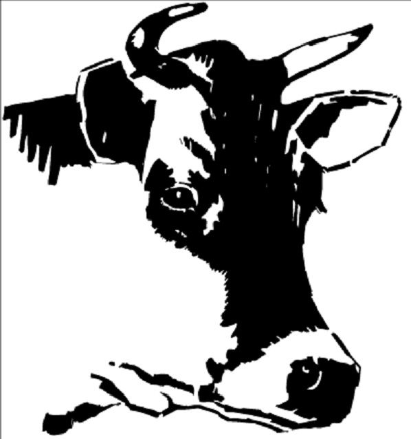 Cow Carnation Clipart