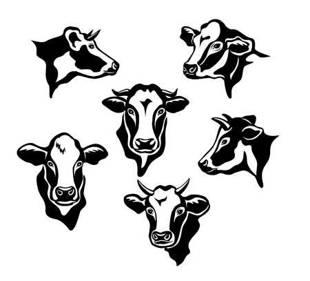 12,309 Cow Head Cliparts, Stock Vector And Royalty Free Cow Head.