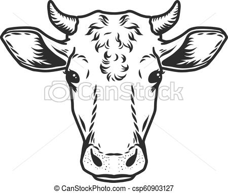 Cow head vector icon. Outline drawn style.