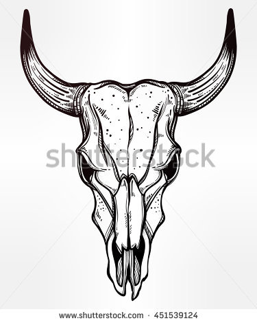 Cow Head Skull Clipart 20 Free Cliparts Download Images