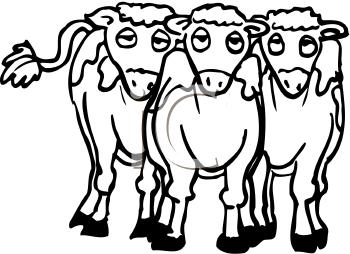 Herd Of Cattle Clipart.