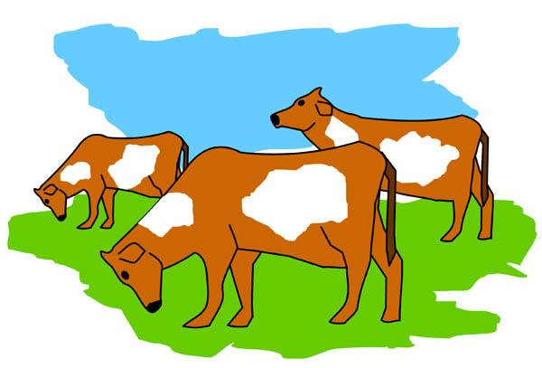 Cattle herd clipart.