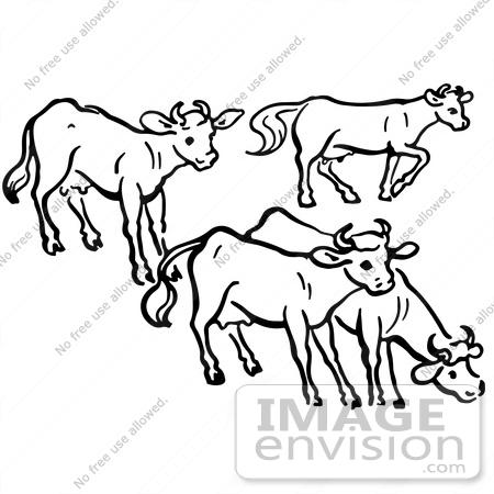 Cows cliparts.