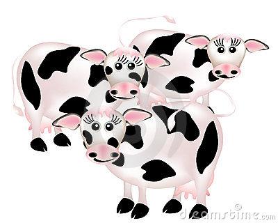 Moo Cows Stock Illustrations.