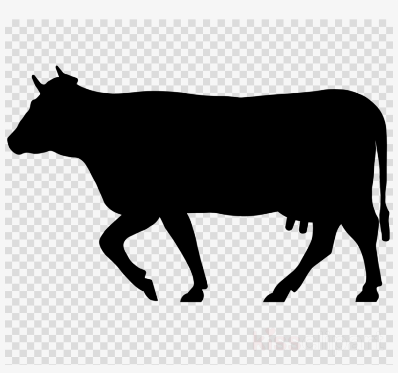 Cow Icon Png Clipart Beef Cattle Welsh Black Cattle.