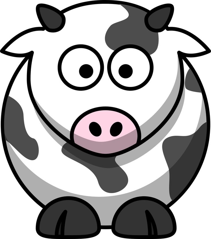 1000+ images about Cow on Pinterest.