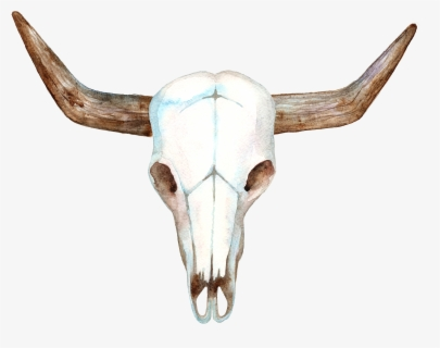 Free Cow Skull Clip Art with No Background.