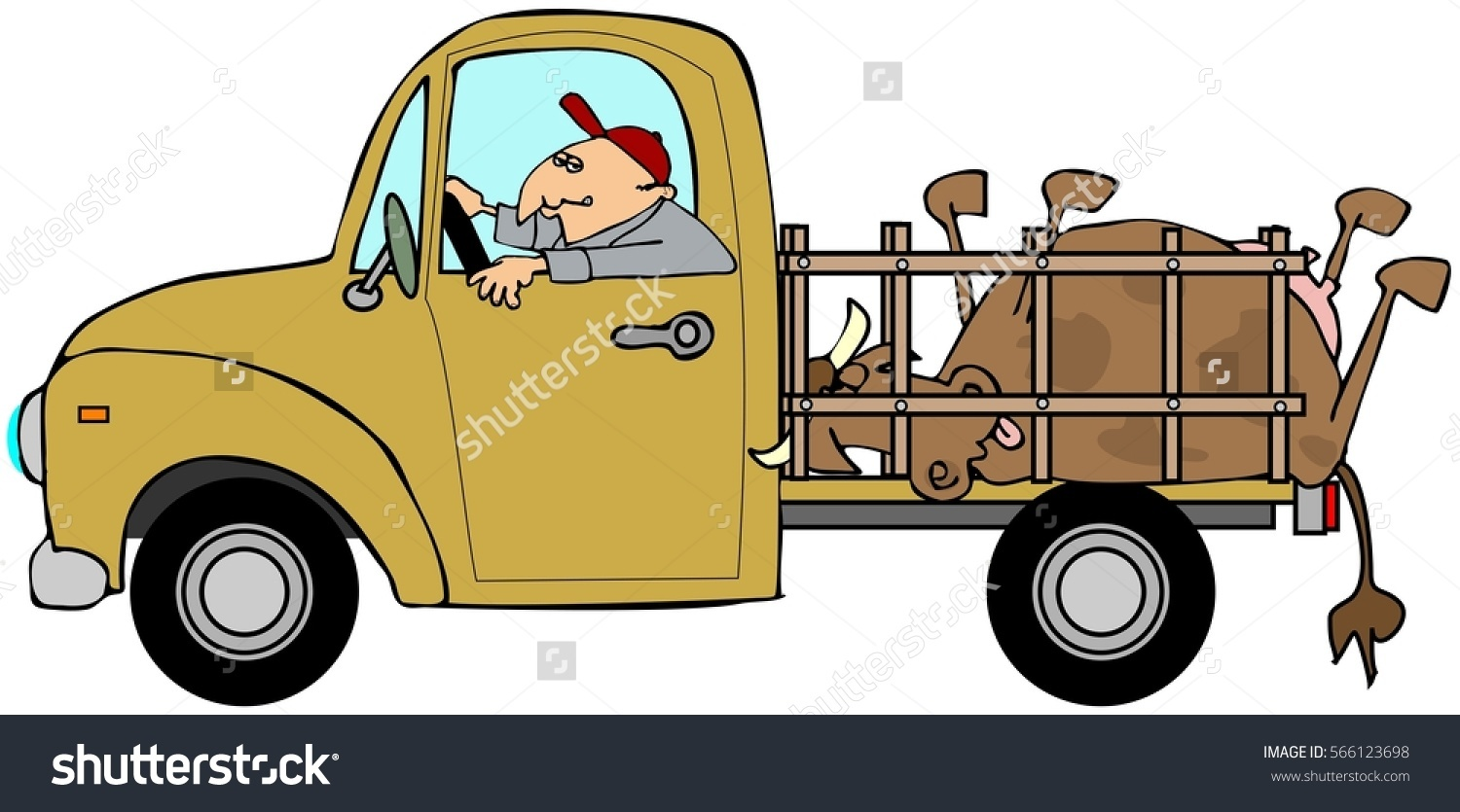 Illustration Man Driving Truck Dead Cow Stock Illustration.