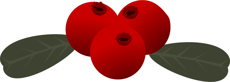 Free Clipart: Lingonberry.