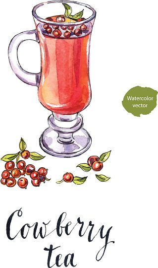 Cowberry tea in a cup with fresh berries Clipart Image.