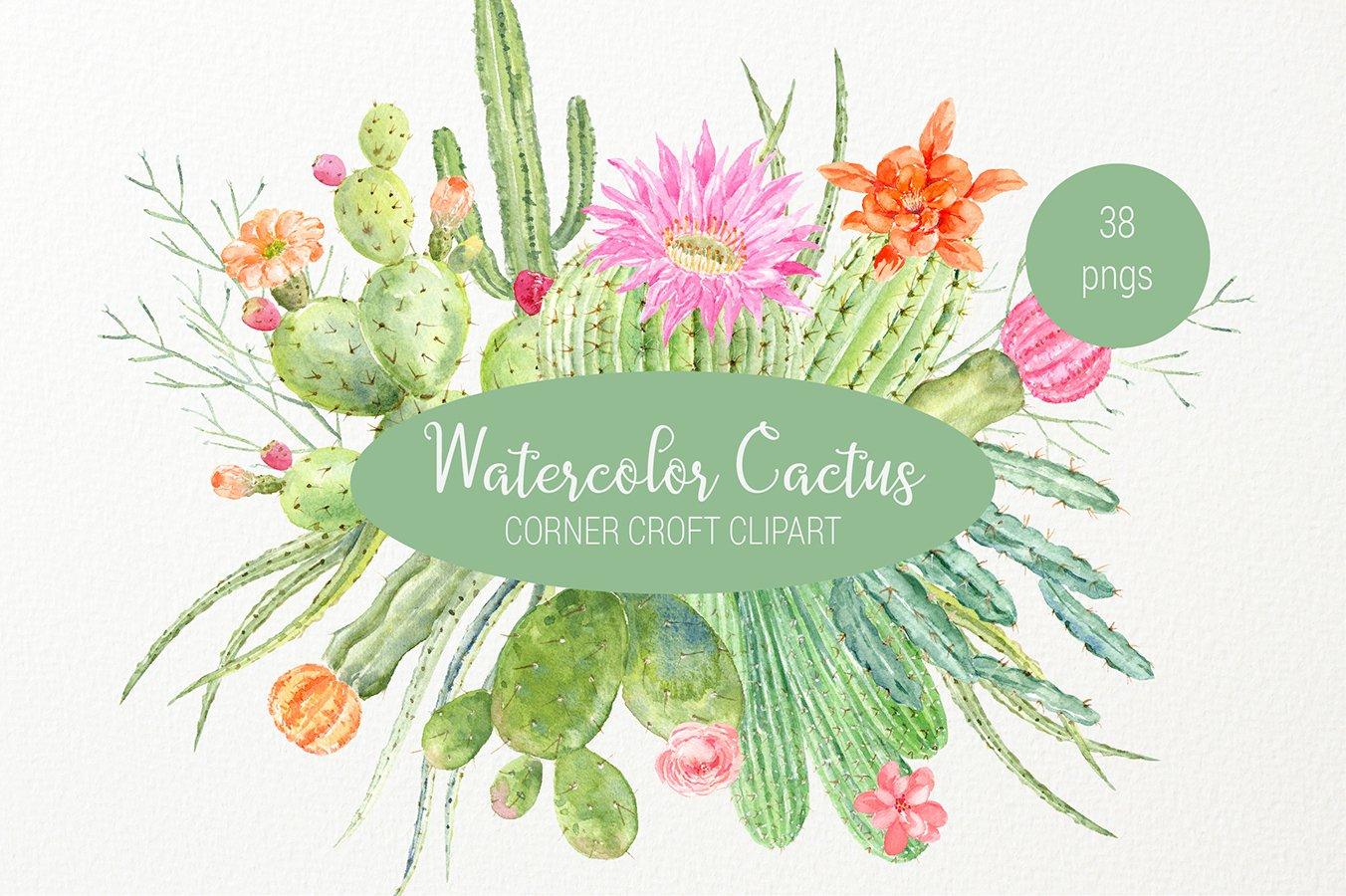 Watercolor cactus clipart, detailed botanial cactus graphics.