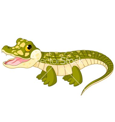 Baby crocodile vector.