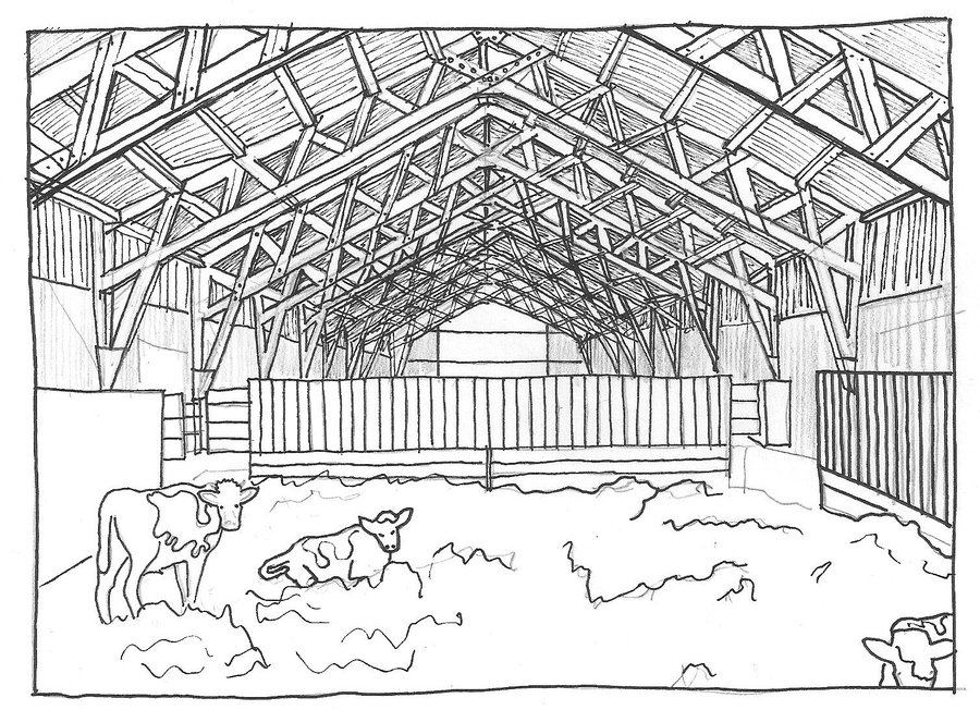 Cowshed drawing.