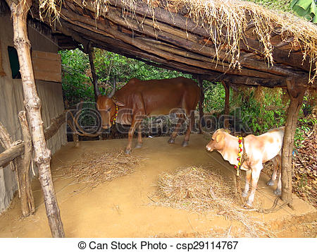 Cowshed Stock Photo Images. 1,097 Cowshed royalty free images and.