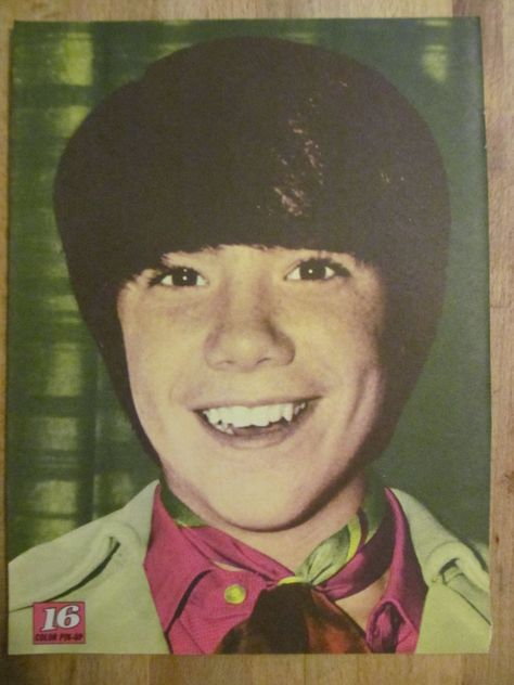 The Cowsills, John Cowsill, Full Page Vintage Pinup.