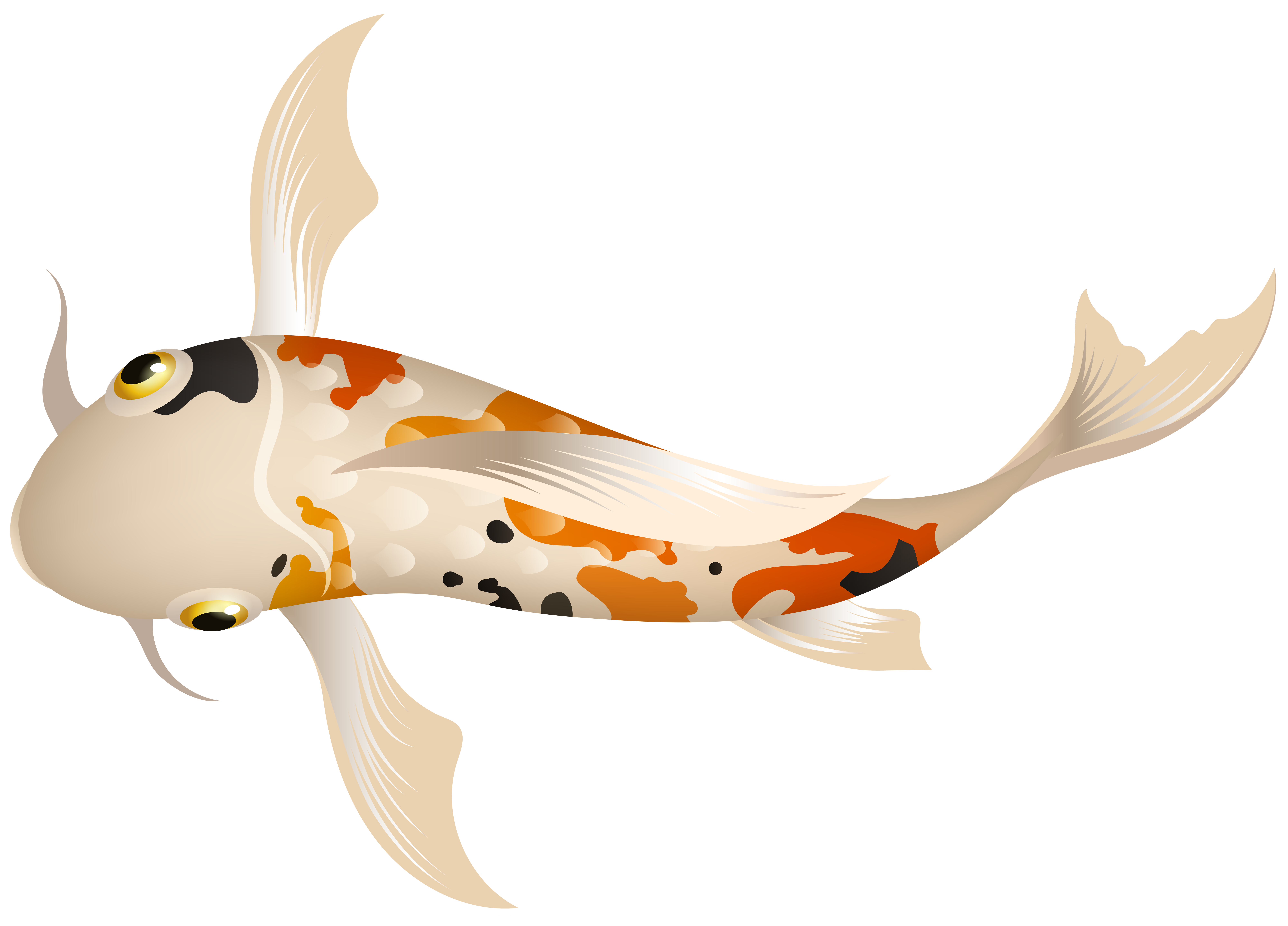 Koi Fish PNG Clipart.