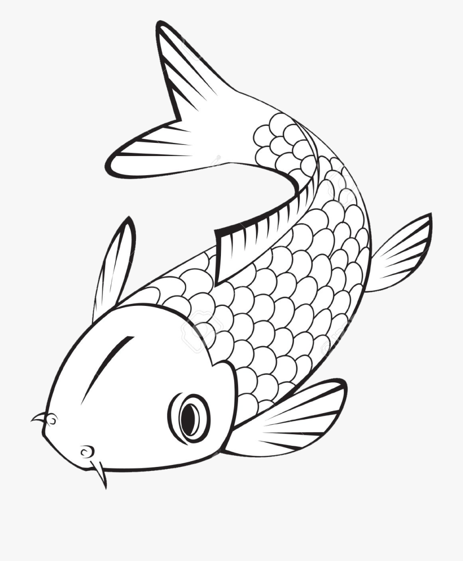 Koi Fish Clipart Black And White , Transparent Cartoon, Free.