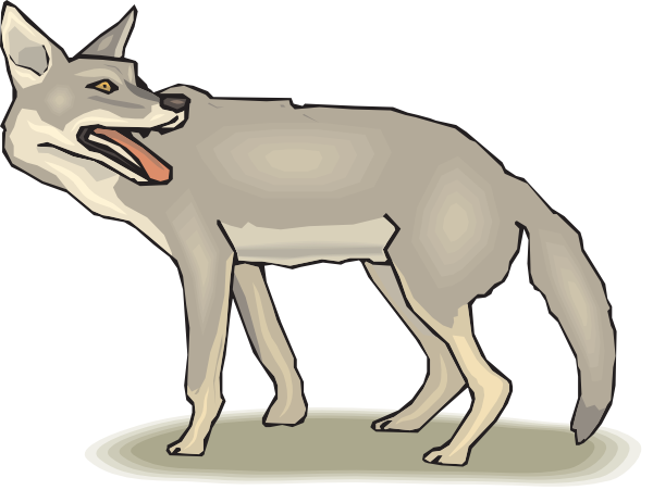 Coyote Clipart & Coyote Clip Art Images.