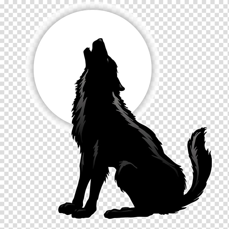 Gray wolf Coyote Silhouette , wolf transparent background PNG.