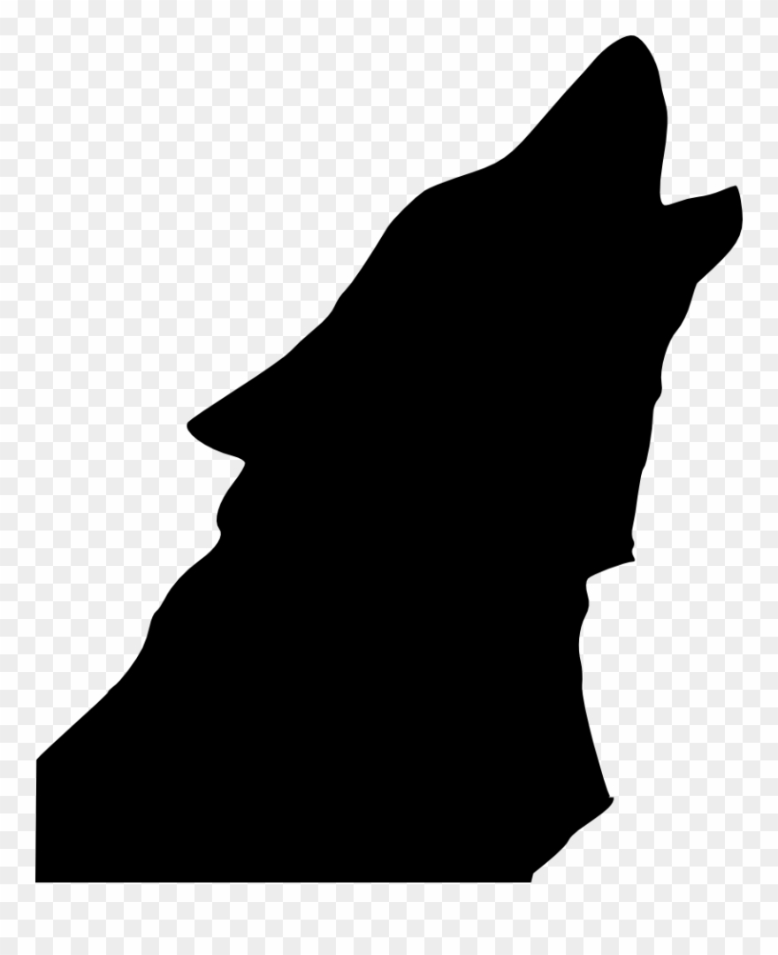 Gray Wolf Coyote Drawing Silhouette Aullido.