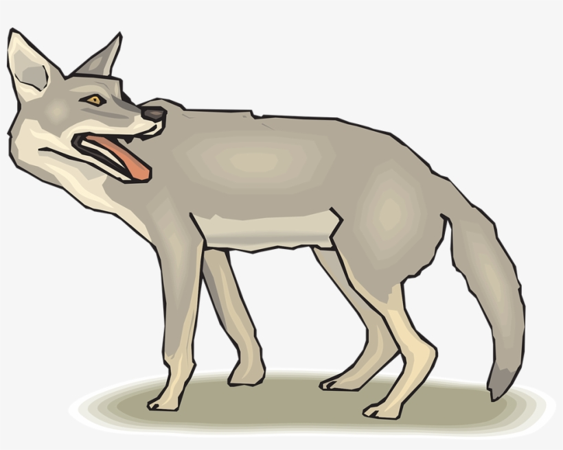 Coyote Clipart Png.