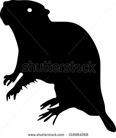 Myocastor Coypus Stock Vectors & Vector Clip Art.