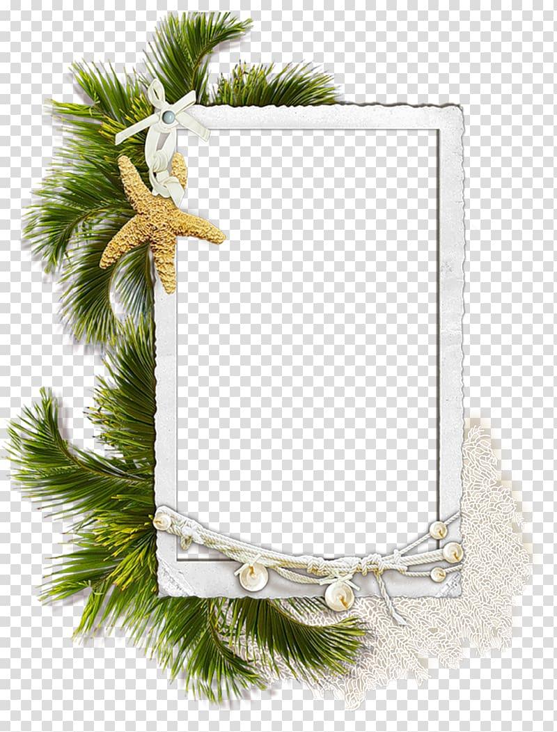 White starfish border illustration, Frames Respect.