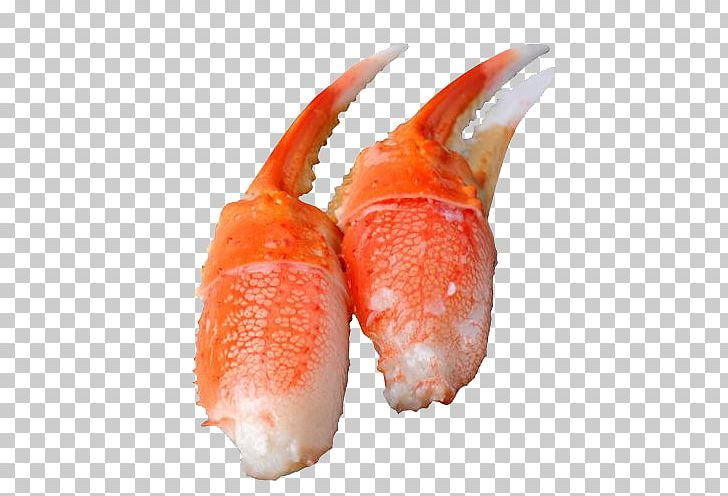 Snow Crab Claw PNG, Clipart, Alaskan, Animal Source Foods, Claw.