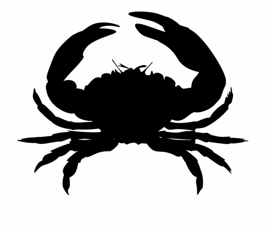 Crab, Cancer, Zodiac, Sign, Seafood, Crustacean, Claw.