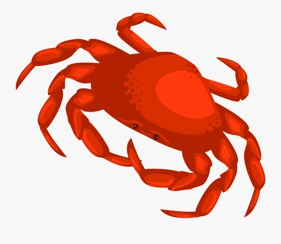 Transparent Horseshoe Crab Clipart.