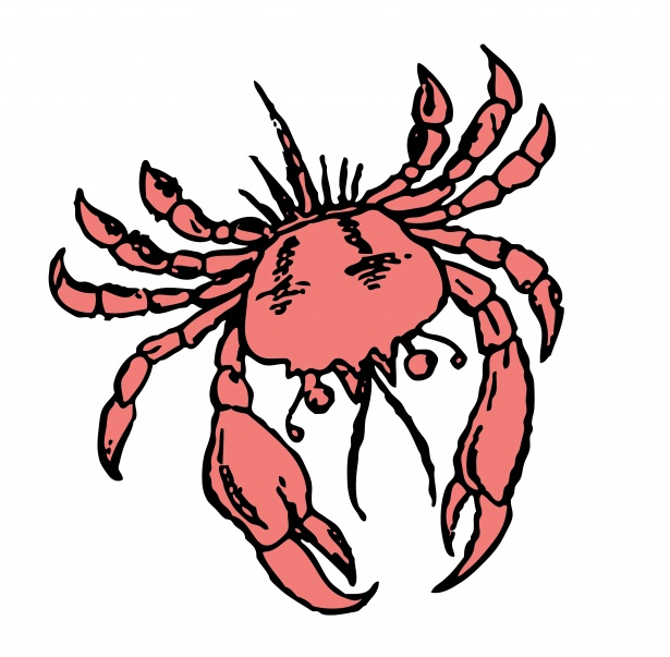 Crab Illustration Clipart Free Stock Photo.