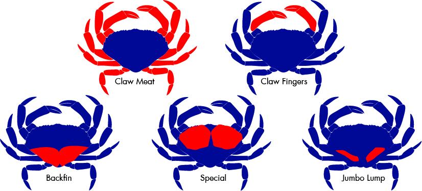 Crab, Blue.