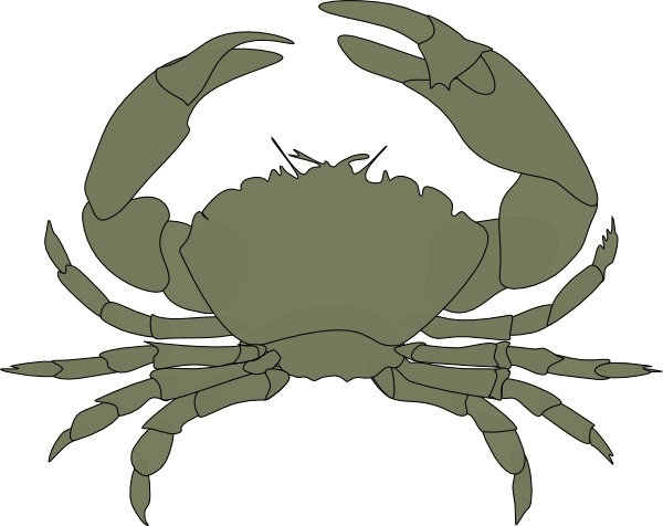 Crab clip art Free vector in Open office drawing svg ( .svg.